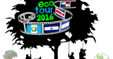 ecotour, trepadores, imposible, el salvador, cooperation internationale, grimpe, arbres